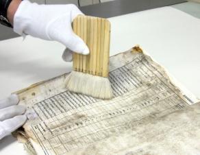 Vue du dépoussiérage d'un document