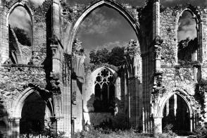 Vue depuis la nef de ce qui reste du transept et du chœur de l'église abbatiale de Notre-Dame du Lys, carte postale.