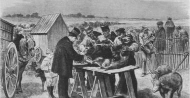 La séance d'inoculation à Pouilly-le-Fort