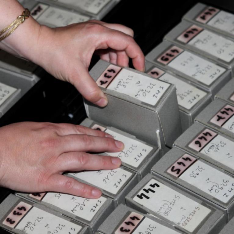 Tiroirs contenant des boîtes de microfilms
